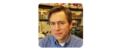 The Department of Laboratory Medicine and Pathology has created the Dr. Alan J. Herr Undergraduate Research Fellowship in memory of our good friend and colleague. We invite you to join in contributing to the fellowship.
